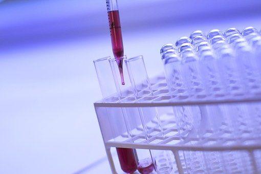 , ¿Qué es la biología? Concepto y definición, Estudianteo