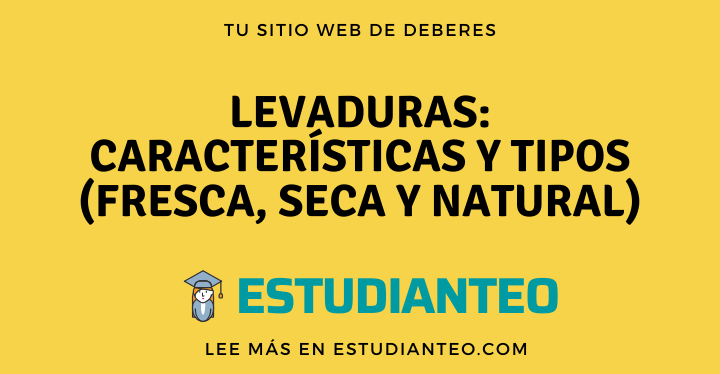 , Levaduras: Características y Tipos (Fresca, Seca y Natural), Estudianteo