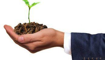 Qué es el Desarrollo sostenible: definición, antecedentes y objetivos