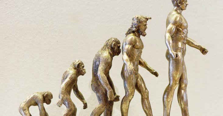 , La teoría de la evolución y Charles Darwin (Con resumen corto), Estudianteo