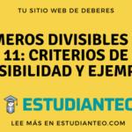 Números divisibles por 11: criterios de divisibilidad y ejemplos