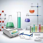 Pasos del método científico: expliación al detalle de sus cuatro fases
