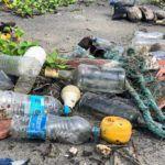 Impacto ambiental: qué es, tipos y ejemplos