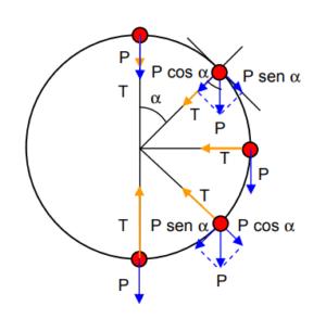 , Movimiento en una circunferencia vertical (qué es y ejemplos), Estudianteo
