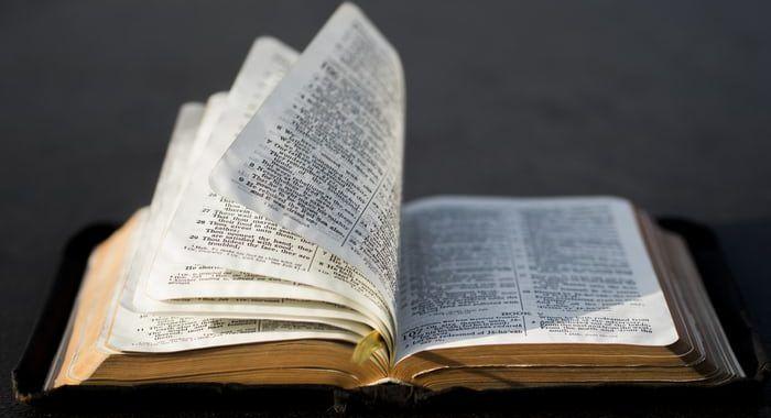 , Creación del mundo según la Biblia – Resumen completo, Estudianteo