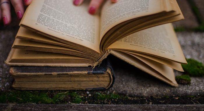 , El Lazarillo de Tormes – Resumen breve, personajes y características, Estudianteo