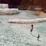Paleolítico superior: qué es, características y resumen