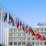 Las nuevas organizaciones internacionales (qué son, importancia y clasificación)