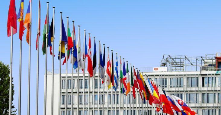 , Las nuevas organizaciones internacionales (qué son, importancia y clasificación), Estudianteo