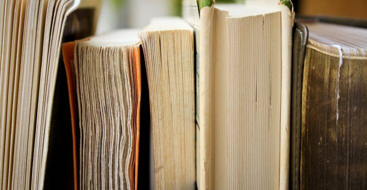 , Resumen de Ética para Amador (por capítulos), Estudianteo