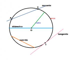 , Circunferencia: definición, elementos y propiedades, Estudianteo